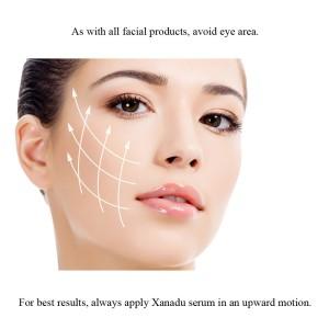 Xanadu-illustrative_1024x1024